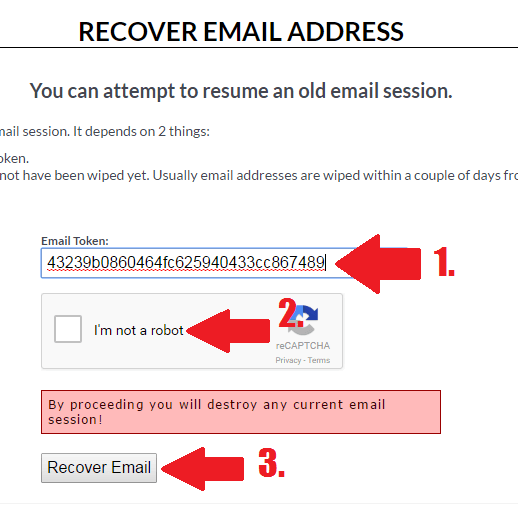 Recover Email Screenshot